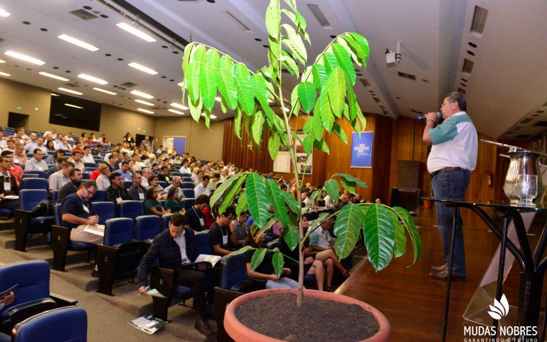 II Workshop Brasileiro de Mogno Africano comemora bons resultados