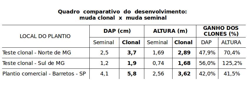 mogno africano quadro comparativo mudas seminais mudas clonais