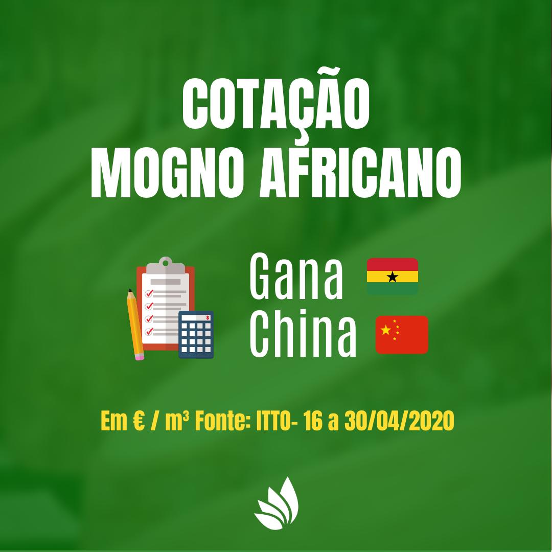 Cotação de Mogno Africano