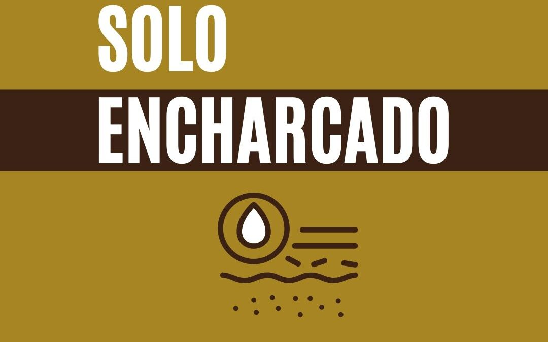 Solo encharcado