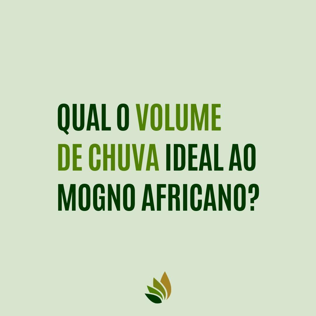 Qual o volume de chuva ideal ao mogno africano?